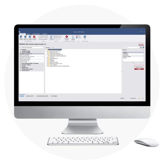 profis software promos